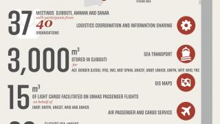 Media Image : logistics_cluster_yemen_infographic_150817.png