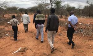 Media Image : zimbabwe_12.png